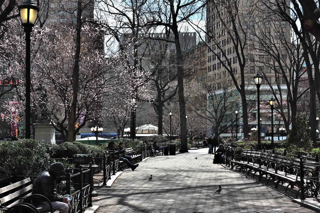 Union Park, Midtown