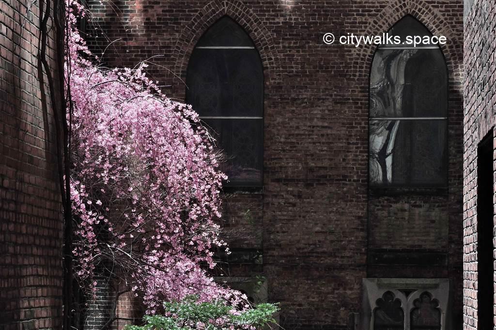 Cloître, Manhattan